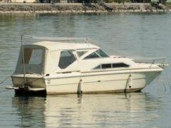 Sea Ray SRV 225 Daycruiser