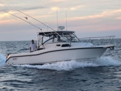 Boston Whaler Conquest 305 Yacht a Motore