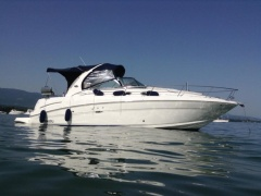Sea Ray Sundancer 335 Motoryacht