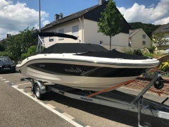 Sea Ray 19 SPX Daycruiser