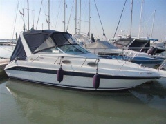 Sea Ray 250 Da Sportboot
