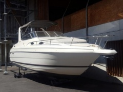 Wellcraft Martinique 2600 Kabinenboot