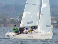Dolphin 81 Day Sailer