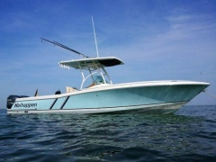 Chris Craft Catalina 29 Deckboot