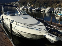 Wellcraft Martinique 2600 Motoryacht