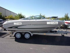 Sea Ray 190 BR Sportboot
