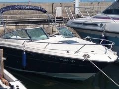 Sea Ray 240 SEE Yacht a Motore