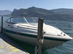 Wellcraft 200 Sportcuddy Motoryacht