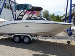 Sea Ray 21 SP OB  Evinrude HO Sportboot