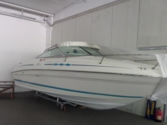 Sea Ray 215 EC Pontoon Boat