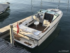 Sea Ray SRV 225 SXL Sport Boat