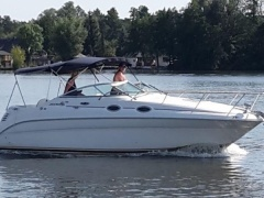 Sea Ray 260 Da Searay Urheiluvene