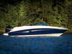 Sea Ray SDX 220 Outboard Speedboot