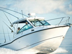 Boston Whaler 285 Conquest Sportboot