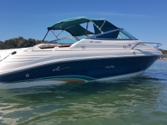 Sea Ray 200 Signature Yacht a Motore