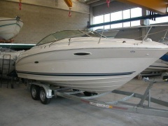 Sea Ray 225 Weekender Imbarcazione Sportiva