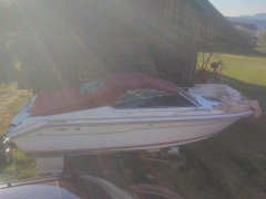 SEA RAY 220 CC Sportboot
