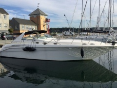 Sea Ray Sundancer 450 DA Yacht a Motore