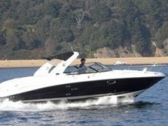 Sea Ray 290 Sun Sport Sportboot