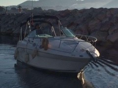 Sea Ray 275 Speedboot