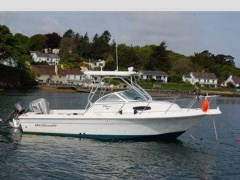 Wellcraft 2200 Coastal Speedboot