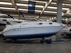 Sea Ray 250 SUNDANCER Barca Pontone