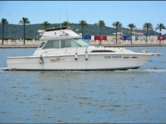 Sea Ray 390 Sportfish - Fly Flybridge Yacht
