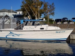 Bayliner trophy Fischerboot