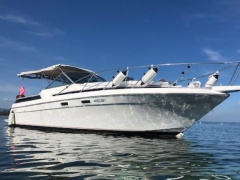 Chris Craft Motorboot 28 Motoryacht