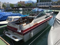 Sea Ray SRV 250 SUNDANCER Kabinenboot