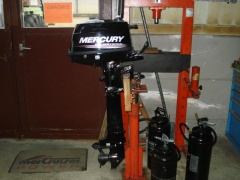 Mercury F6 MLH Outboard
