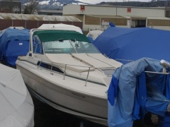 Sea Ray SRV 270 Pilothouse Boat