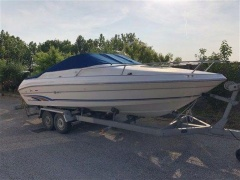 Sea Ray 200 Sr Sportboot