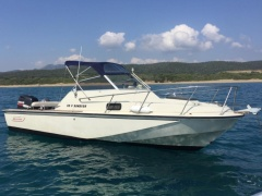 Boston Whaler Revenge 22 Semicabinato