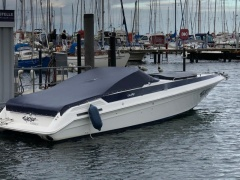 Sea Ray Pachanga 32 Offshoreboot