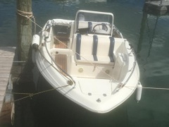Quicksilver Commander 500 Runabout