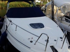 Sea Ray 255 Ponton-Boot