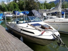 Sea Ray SRV 200 cc Sportboot