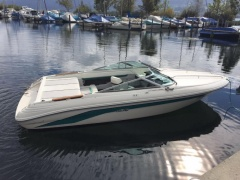 Sea Ray 200SR Sportboot