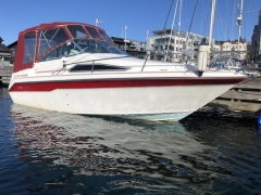 Sea Ray 220DA Daycruiser