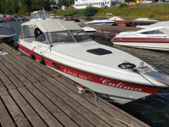 Regal 250 XL Sportboot