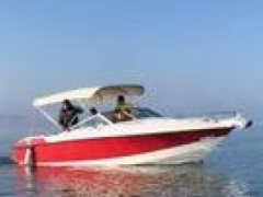 Sea Ray Wellcraft 210 Classic Cabinato