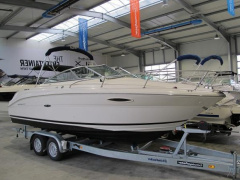 Sea Ray 225 WE Sportboot
