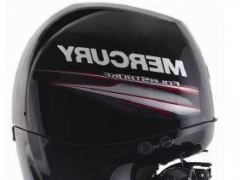 Mercury 150 EFI XL en stock Outboard