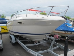 Sea Ray 225 WE - auf Lager Kabinenboot