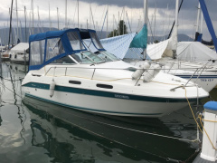 Sea Ray 230 DA Pilothouse