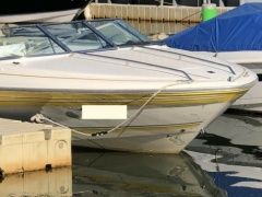 Sea Ray 185 SR Sport Boat