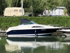 Sea Ray 220 DA Sportboot