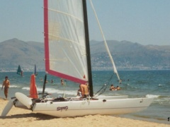 Dart Sting Catamaran