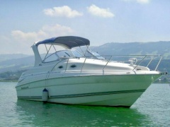 Wellcraft Martinique 2600 Yacht a Motore